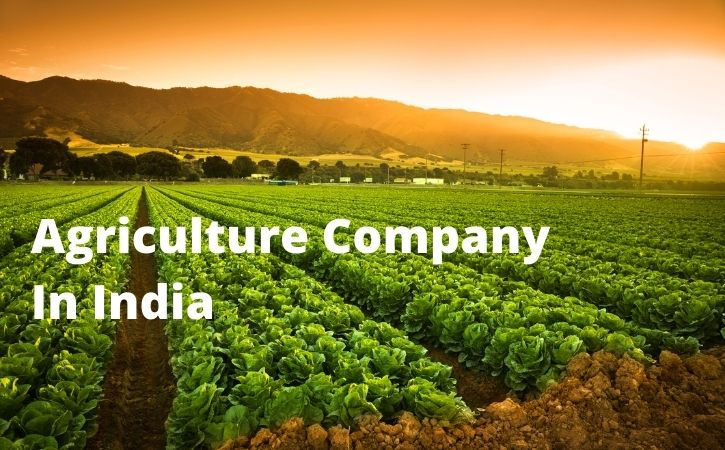 Agriculture Company In India